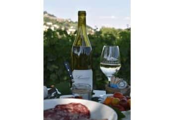domaine-grall-vigneron-vente-de-vin-en-ligne