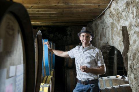 domaine-chateau-de-gaure-vins-languedoc-roussillon